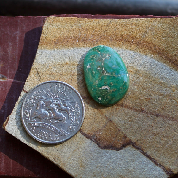 11.2 carat green Stone Mountain Turquoise cabochon
