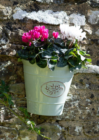 Blenheim Wall Planter - Green - Pre-order for 01/03/2021