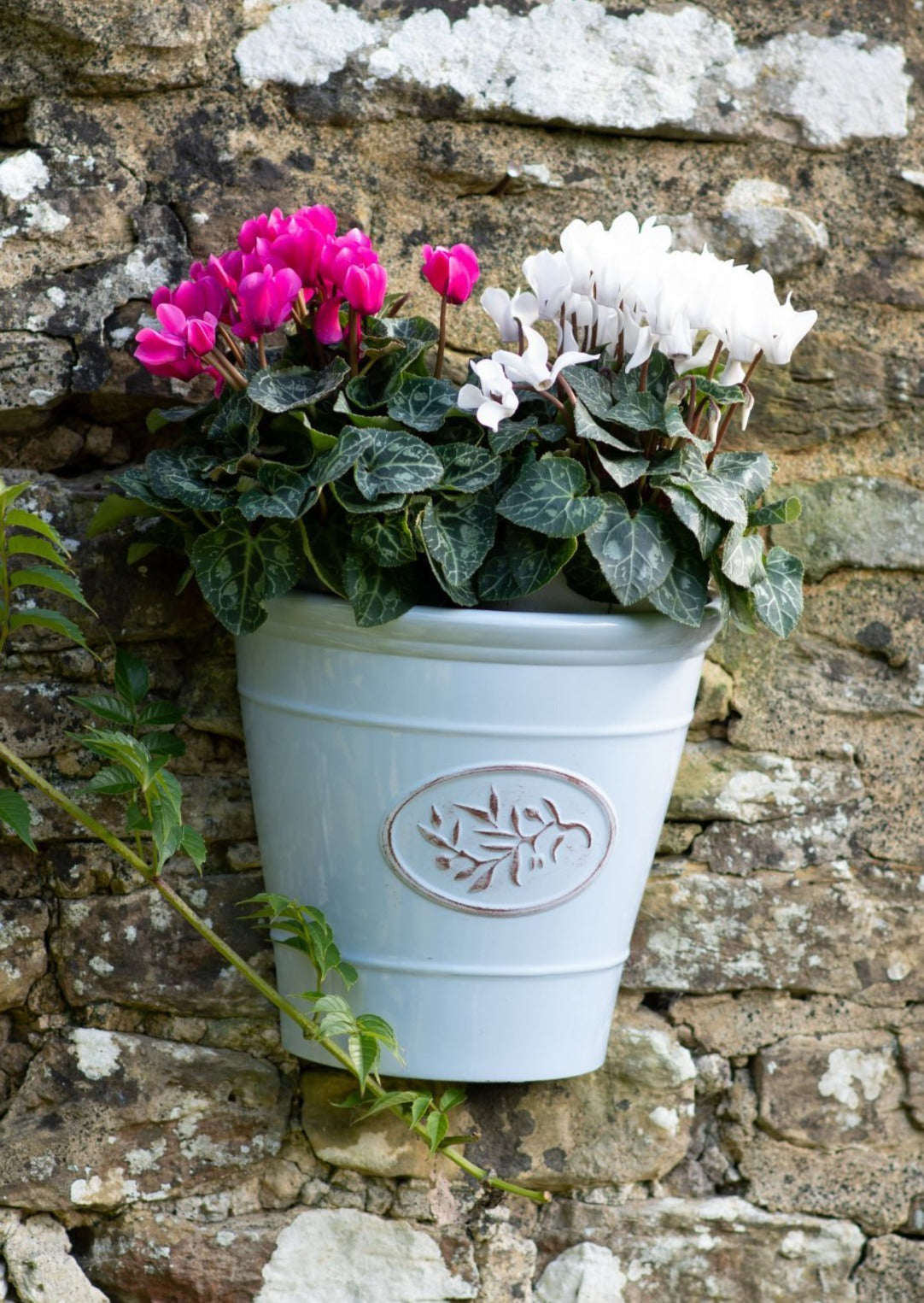 Blenheim Wall Planter - Light Blue