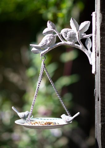 Wall Mounted Bird Bath / Feeder