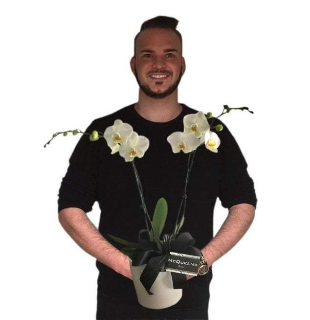 Double stem Orchid Plant in Pot | McQueen's Florist Adelaide | Florist Delivery Adelaide