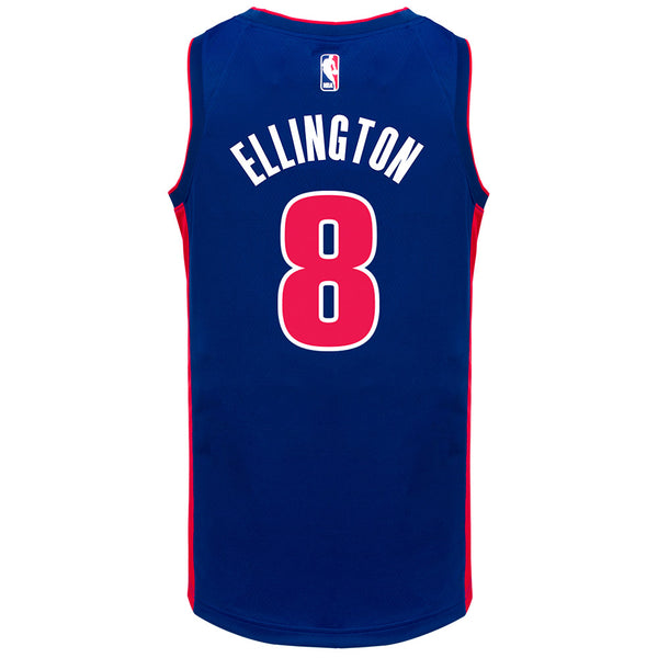 Wayne Ellington  Nike Icon Swingman Jersey
