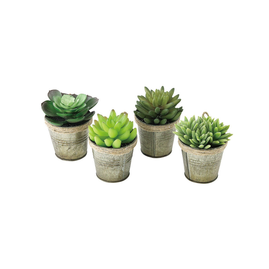 Imitation Succulents in Bliki Pot – Set of 12 (4 styles X 3 pc)