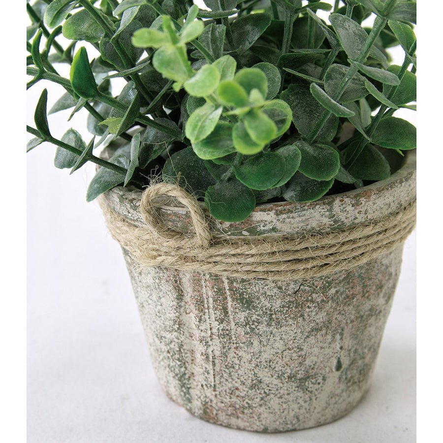 Imitation Plant in Rustic Stone Pot - Oregano 6 pc set