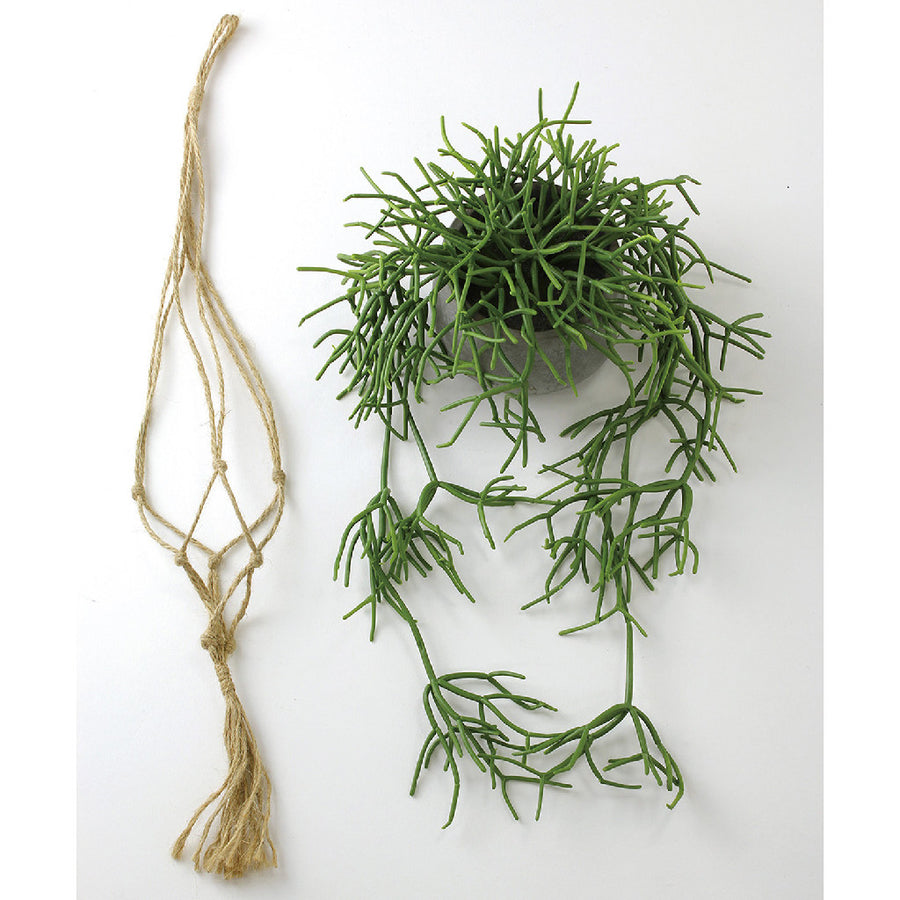 Imitation Hanging Succulent Arrangement in Cement Pot with Hemp Rope Hanger