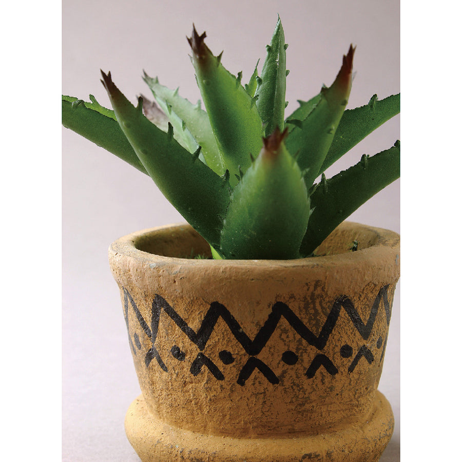 Imitation Agave in Tribal Pot 2 pc set