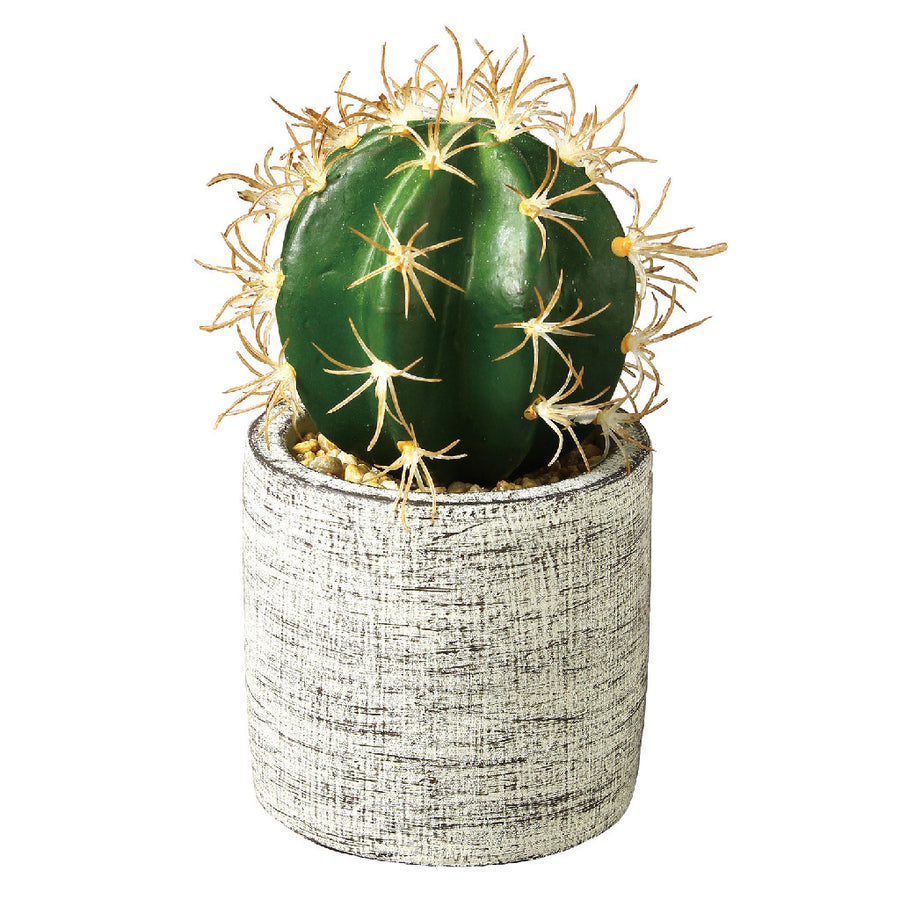 Imitation Barrel Cactus in Cement Pot 2 pc set