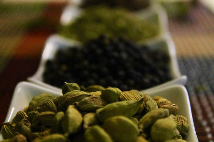 How Cardamom Helps You To Kill Bacteria And Fungi