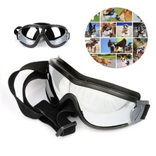 Load image into Gallery viewer, Dog Accessories - Eye Wear