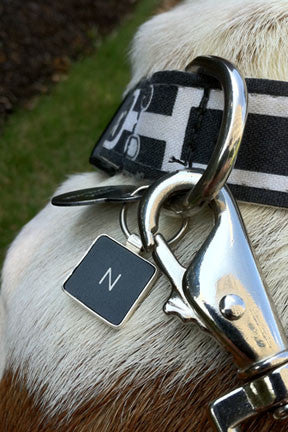 Letter Key Chain, Pet Tag or Pendant