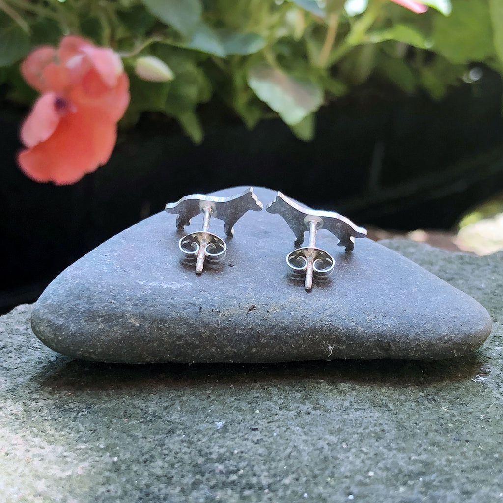 Australian Cattle Dog Ear Studs