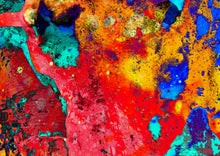 Load image into Gallery viewer, Looking for reds digital abstract pop art print.