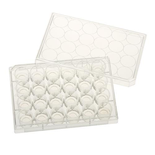 Celltreat 229125 24 Well Glass Bottom Tissue Culture Plate, 10mm Glass, Sterile