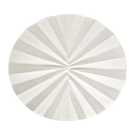 Whatman 10314745 Filter Circles, 150mm Dia, Folded Prepleated Grade 1573 1/2, 100/pk (PN:10314745)