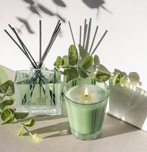 Load image into Gallery viewer, Nest Wild Mint & Eucalyptus Reed Diffuser