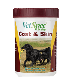 Coat & Skin Supplement