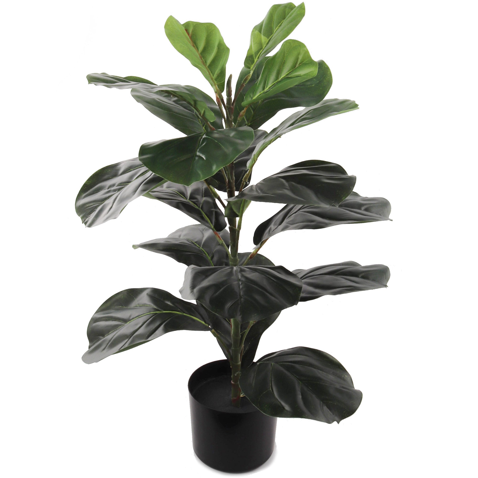 "Fiddle Leaf Ficus Plant 30"" with 21 Leaves"