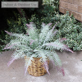 "Boston Fern All Weather 22"" 15 Fronds"