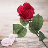 Rose Bud Beauty Color 20""