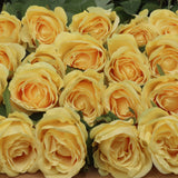 Rose Bud White 20""