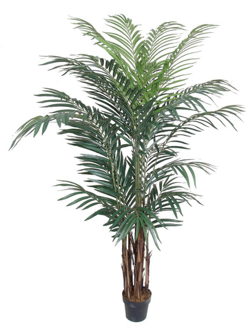 Silk Areca Palm Tree, 8 Ft with Arching Feathery Fronds, Vibrant Dark Green Color, Bark Tree Trunk, Tropical Plant, Black Pot Base