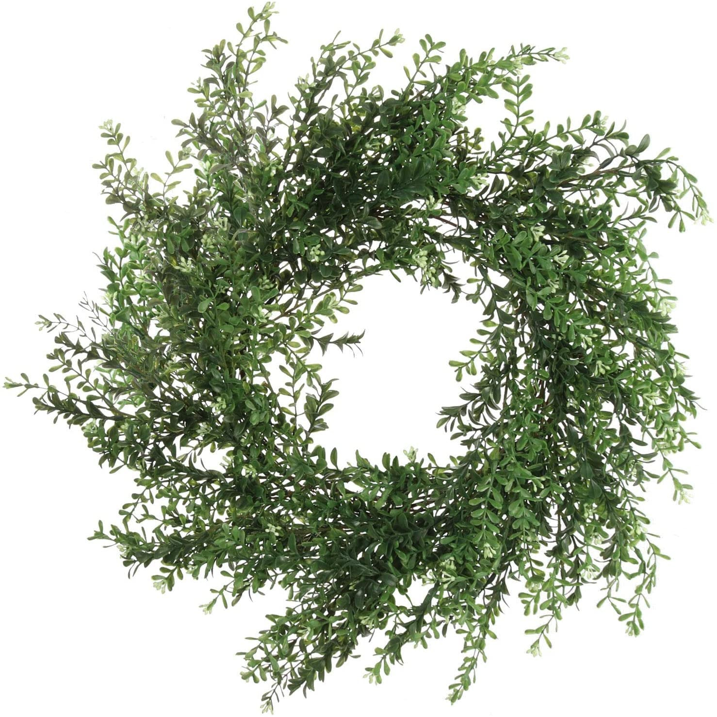 Boxwood Wreath 20""