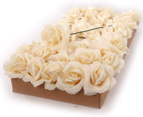 "Ivory Rose Pick 8"" Long 3"" Wide Box of 50"