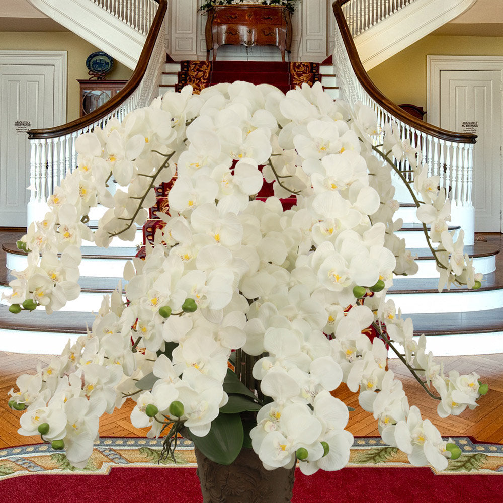 "Real Touch Silk Phalaenopsis Orchid Huge 49"" Length 16 Flowers"