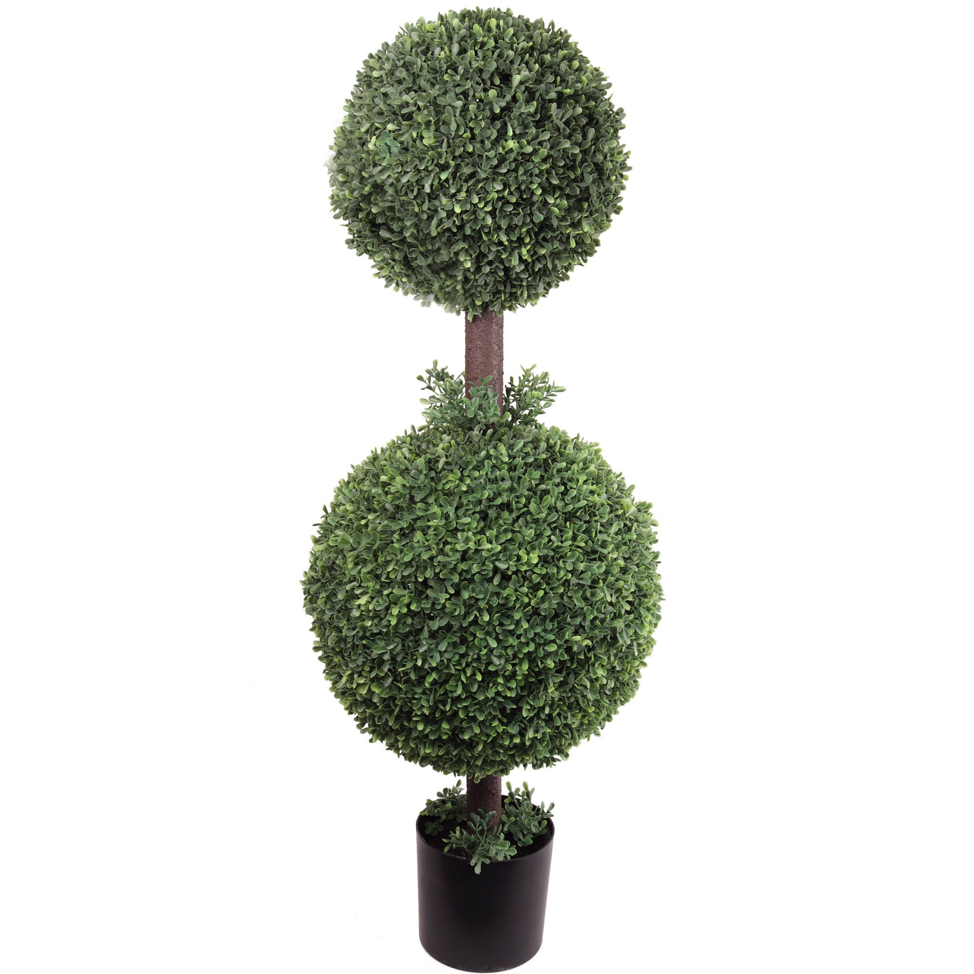 Boxwood Double Ball Topiary 25""