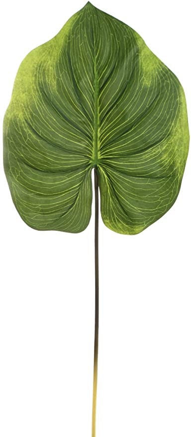 Real Touch Alocasia Leaf 33""