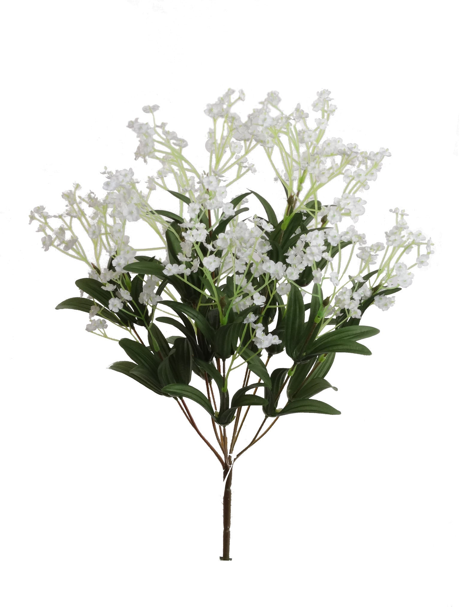 Baby's Breath Gypsophila Bush 19""