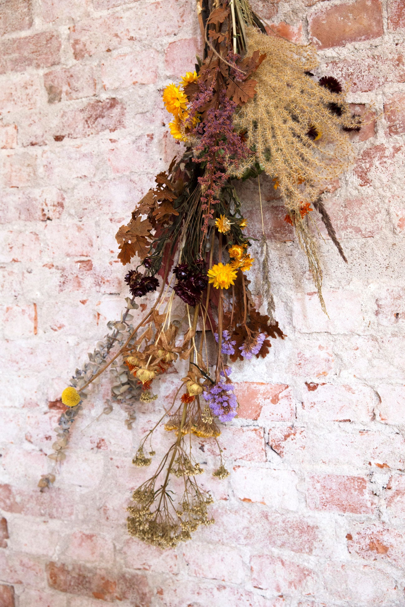 Dried bunch of flowers hanging on a wall