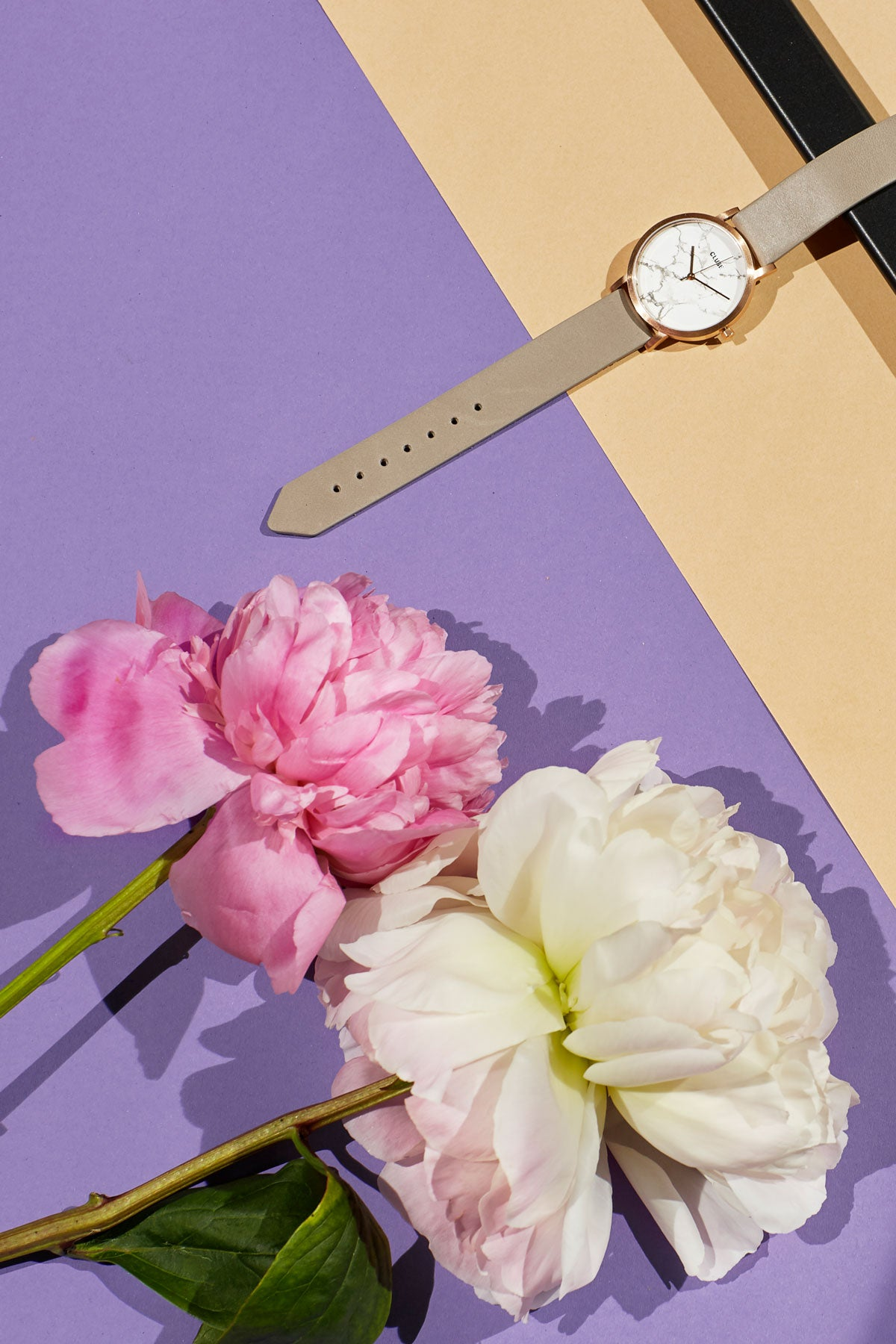 White and pink peony on purple background with watch