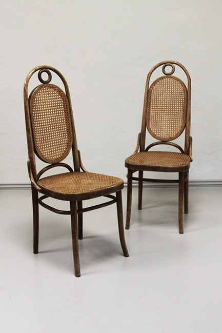 Cane bentwood chairs