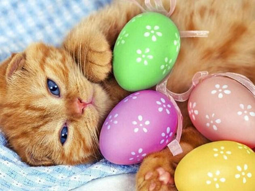 Cat on Easter Paint by Diamonds