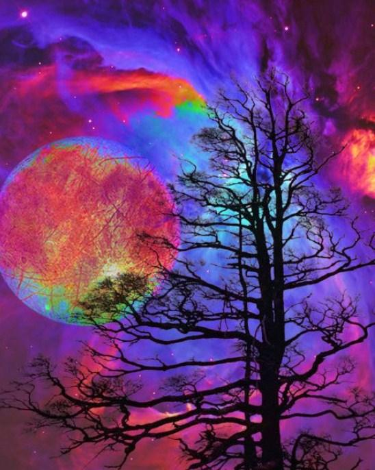 Colorful Galaxy & Barren Trees Diamond Painting