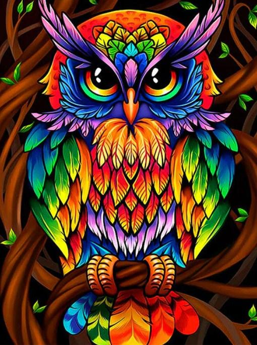 Colorful Owl Diamond Painting Kit