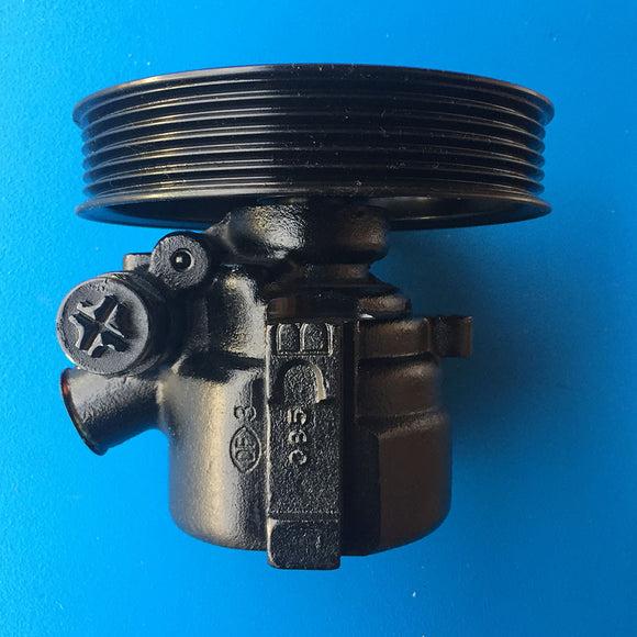 Ford Falcon BA BF Territory SX SY 6CYL Power Steering Pump Brand New!! FDP2020 - SydneySpareParts