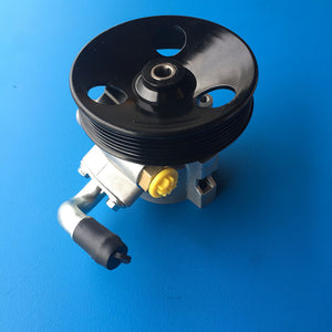 Holden Captiva CG 2.0L 9/06 - 2/11 DIESEL Power Steering Pump New!! GMP1020 - SydneySpareParts