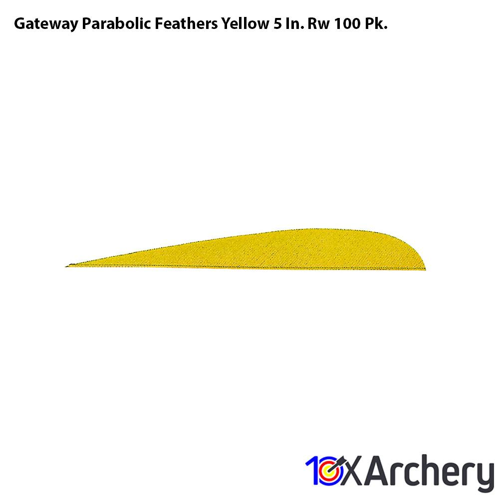 Gateway Parabolic Feathers Yellow 5 In. Rw 100 Pk. - Feathers