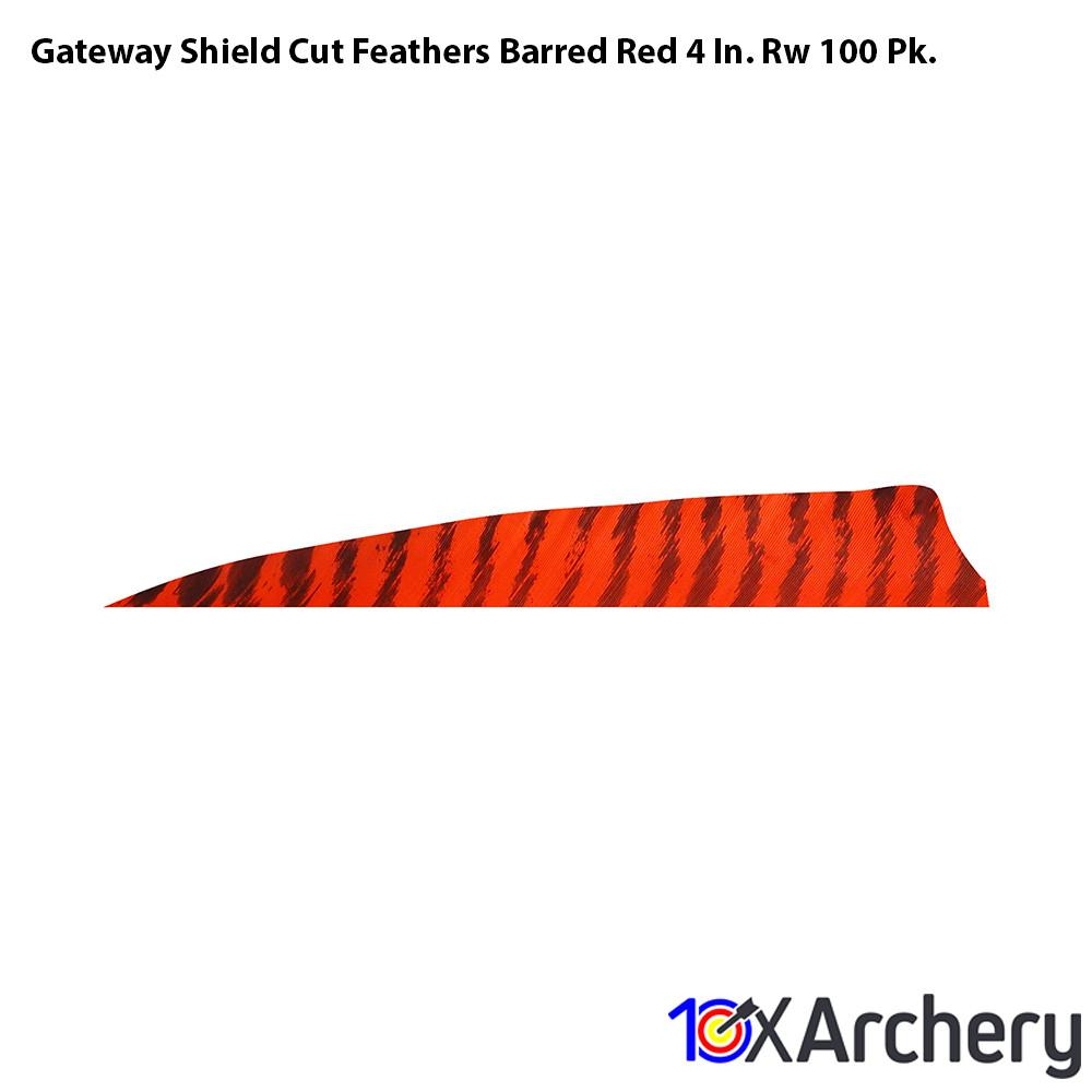 Gateway Shield Cut Feathers Barred Red 4 In. Rw 100 Pk. - 10xArchery