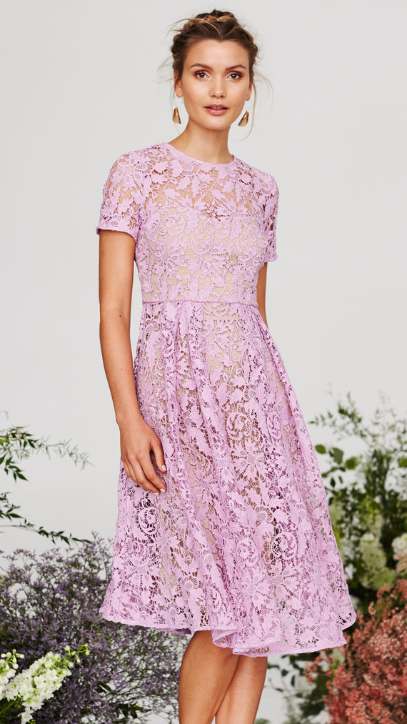 Snapdragon Fit & Flare Lace Dress - Floss- Cooper St