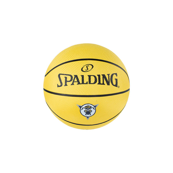Mad Ants Primary Logo Mini Basketball