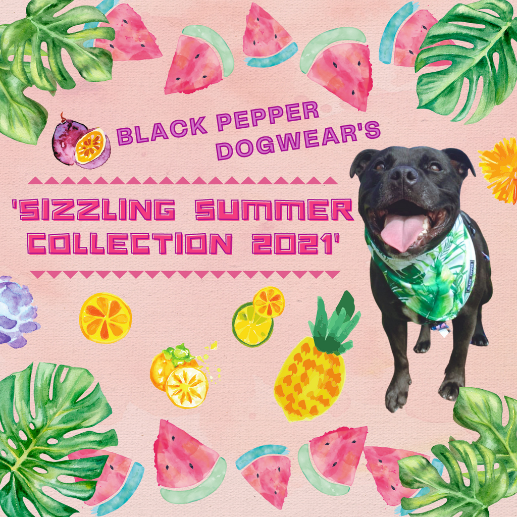 The Huge Sizzling Summer Collection Release!