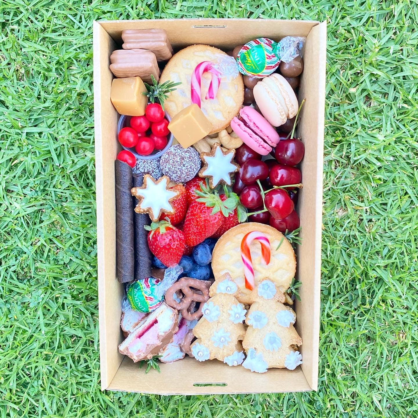 Wish You a Berry Christmas Box