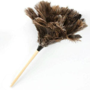 Feather Duster Inverted Large Cleaner