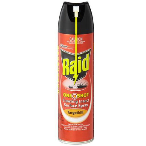 Raid One Shot Crawling Insect Surface Spray 320g