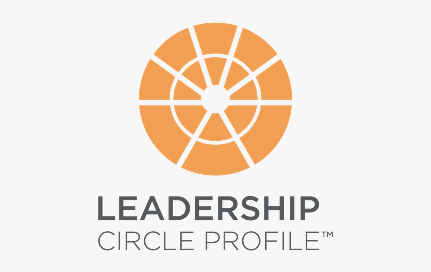 Leadership Circle Profile 360 (assessment + debrief sessions)