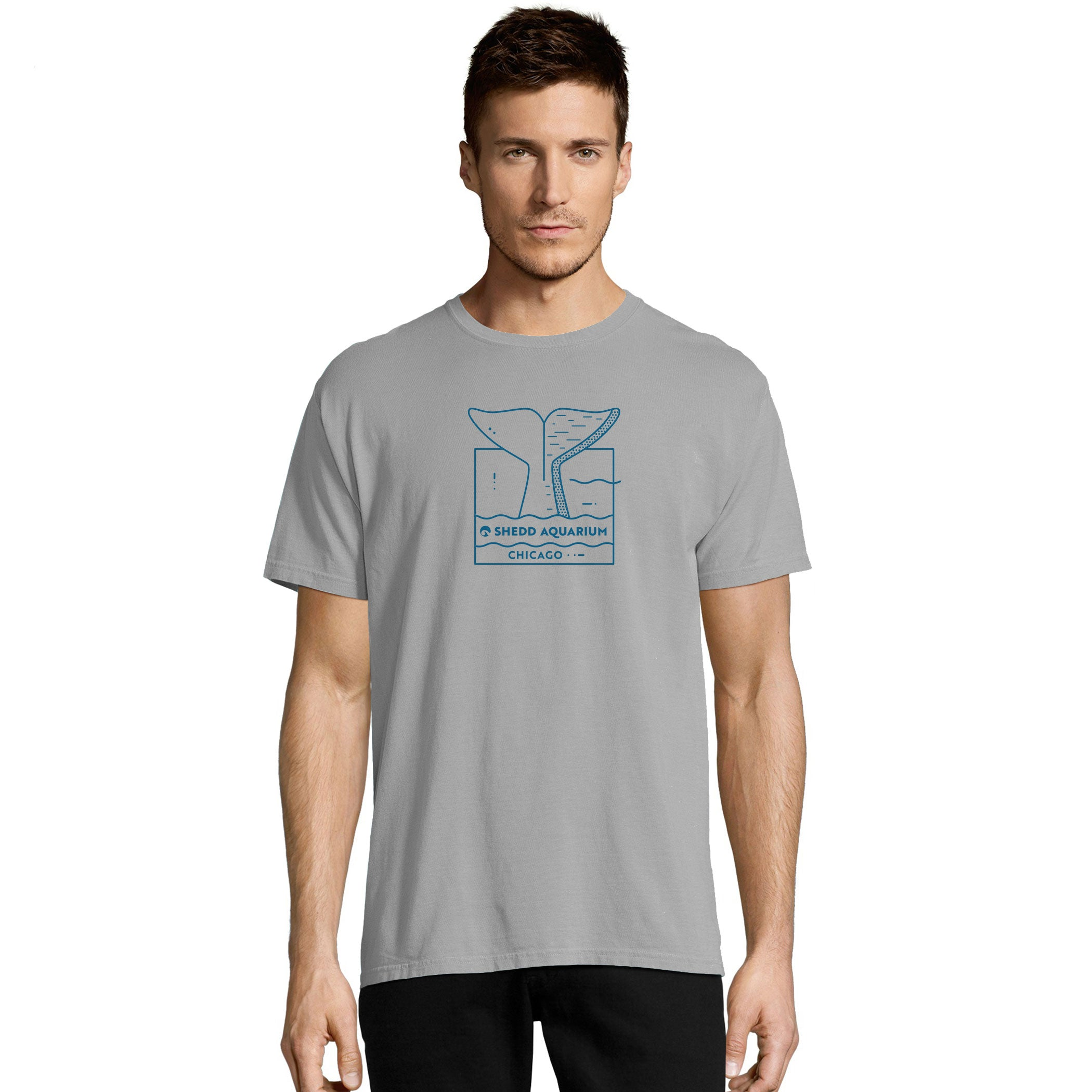 Beluga Tail Chicago Adult T-Shirt
