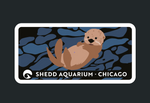 Load image into Gallery viewer, Sea Otter Patch